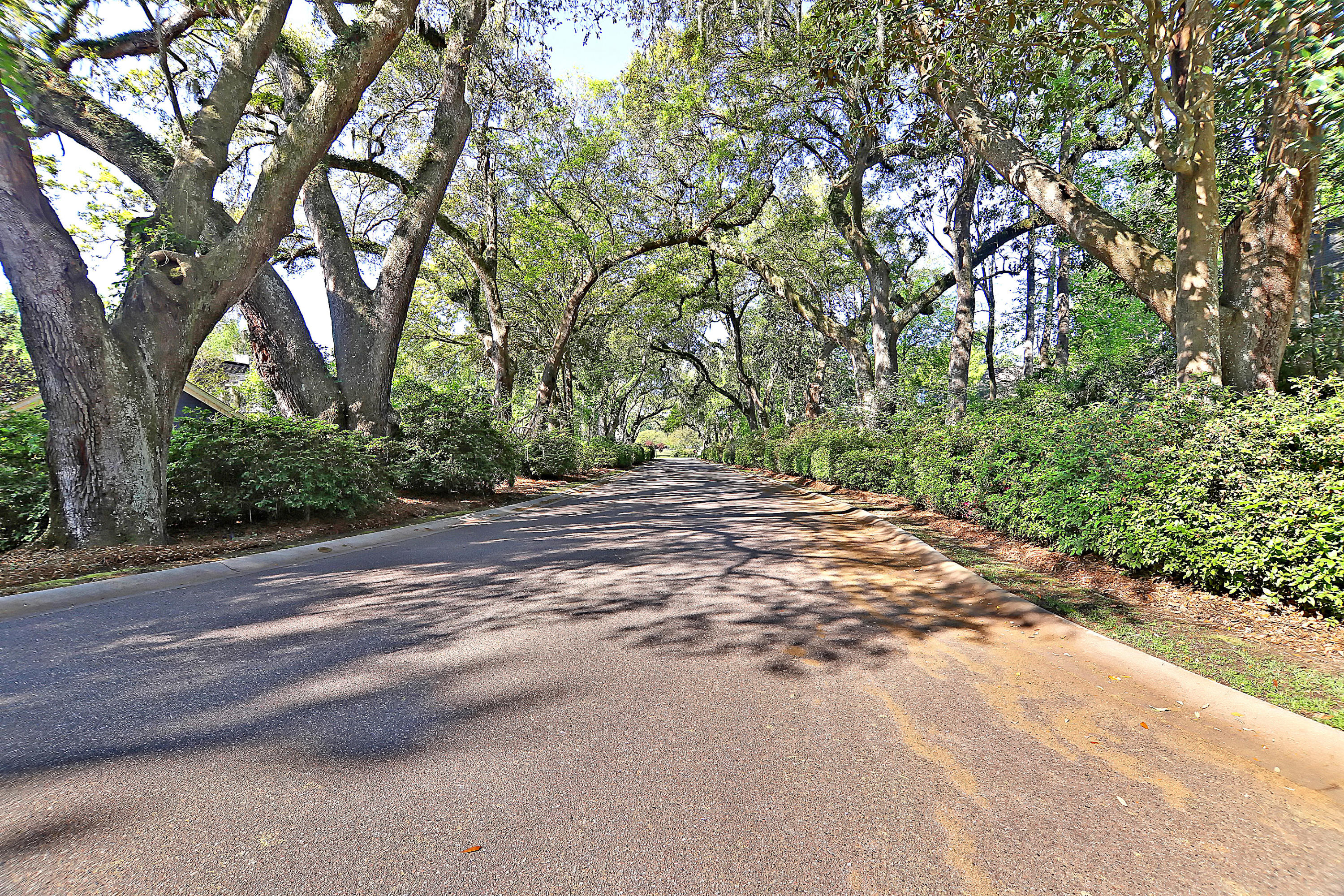 3001 Macbeth Creek Drive Charleston, SC 29414