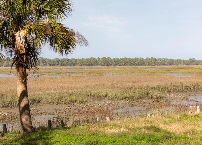Oak Island Homes For Sale - 1544 Oak Island, Charleston, SC - 27