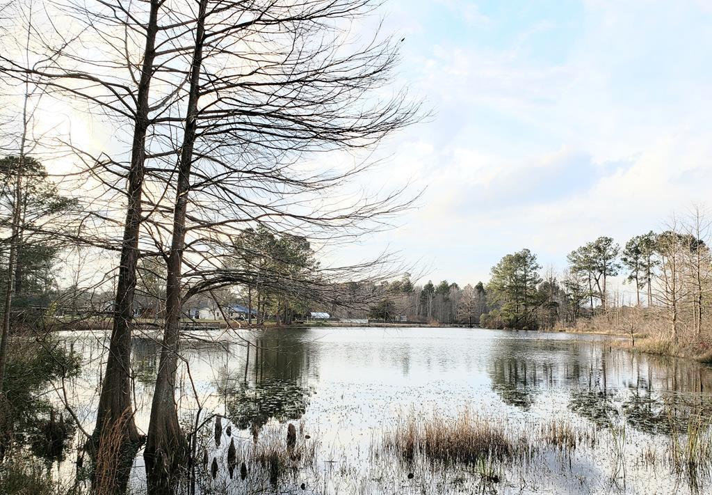 Tbd Fountain Lake Drive Eutawville, SC 29048