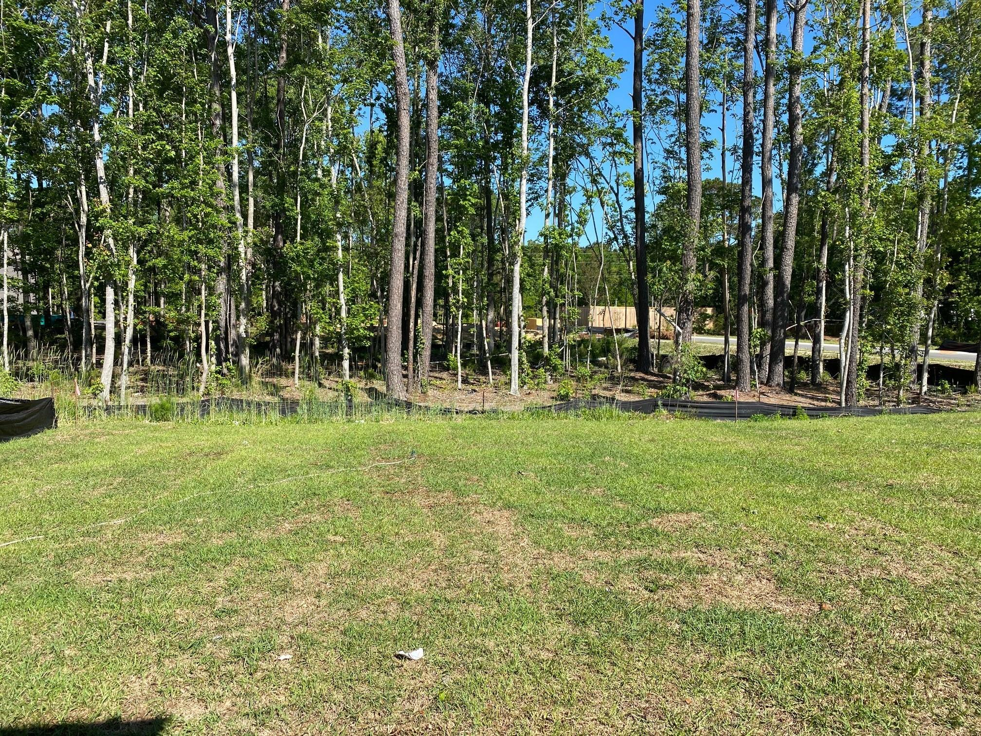 Bees Crossing Homes For Sale - 958 Sago Palm, Mount Pleasant, SC - 14