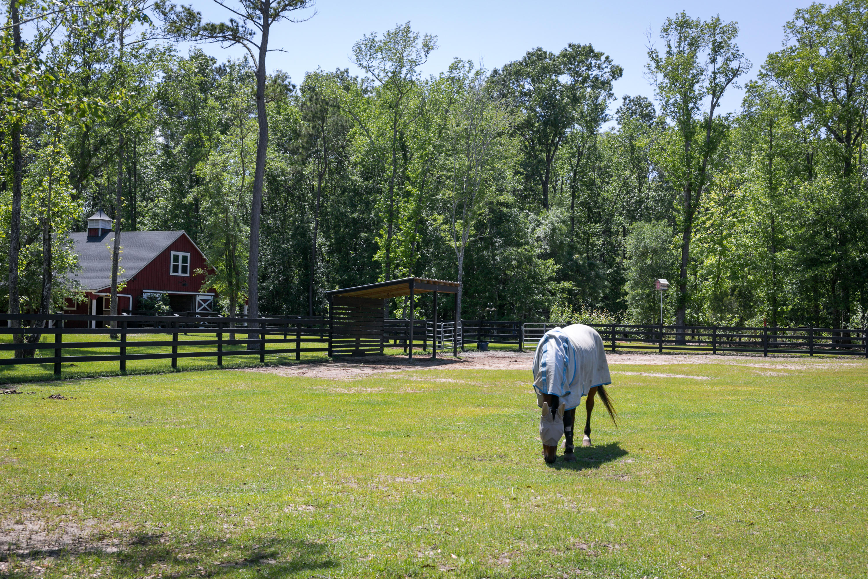 Pepper Plantation Homes For Sale - 1472 Old Rosebud, Mount Pleasant, SC - 9