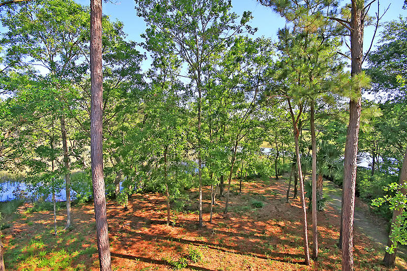 Grassy Creek Homes For Sale - 332 Tidal Place, Mount Pleasant, SC - 8