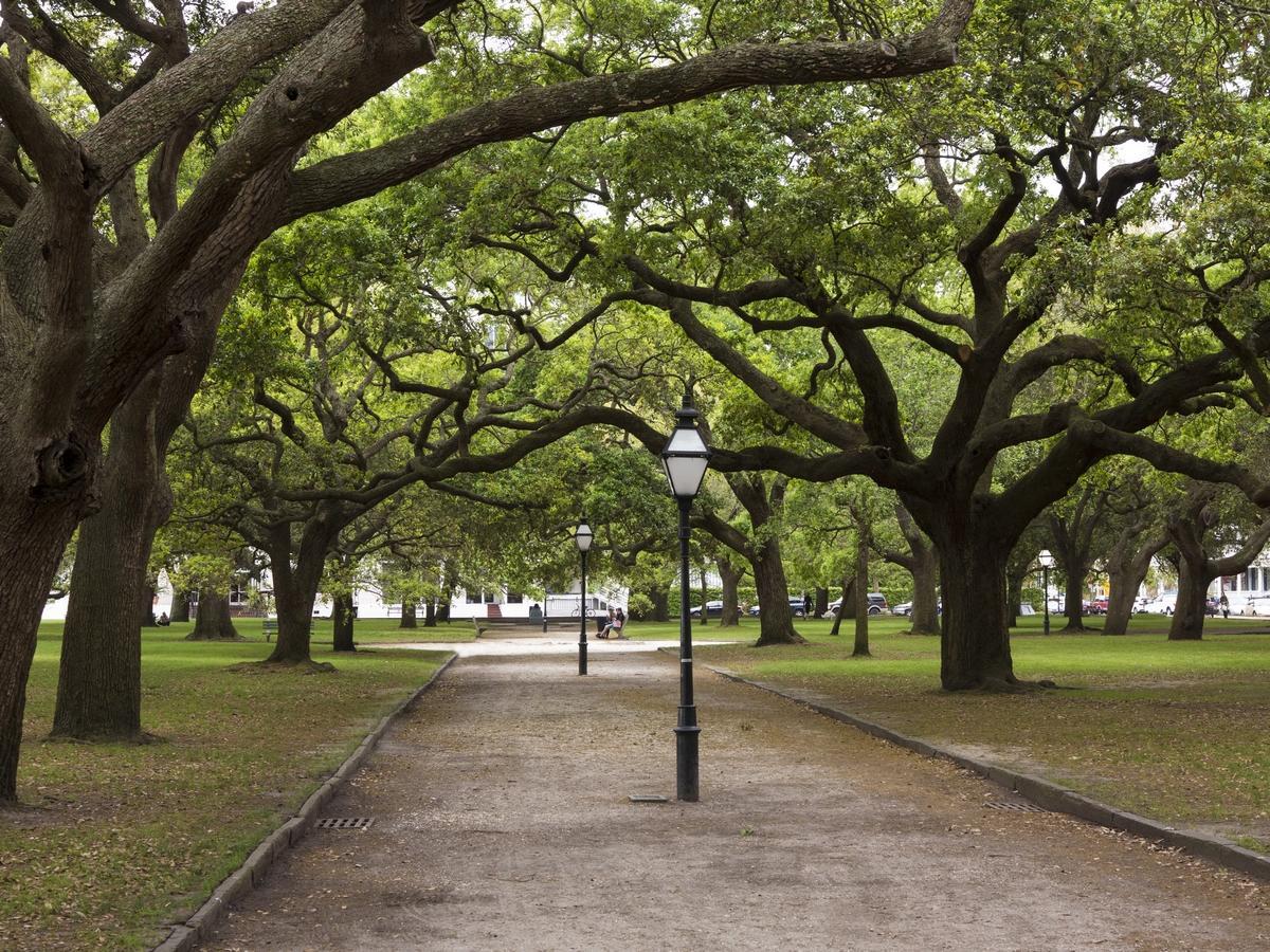 1 King Street UNIT 104 Charleston, SC 29401