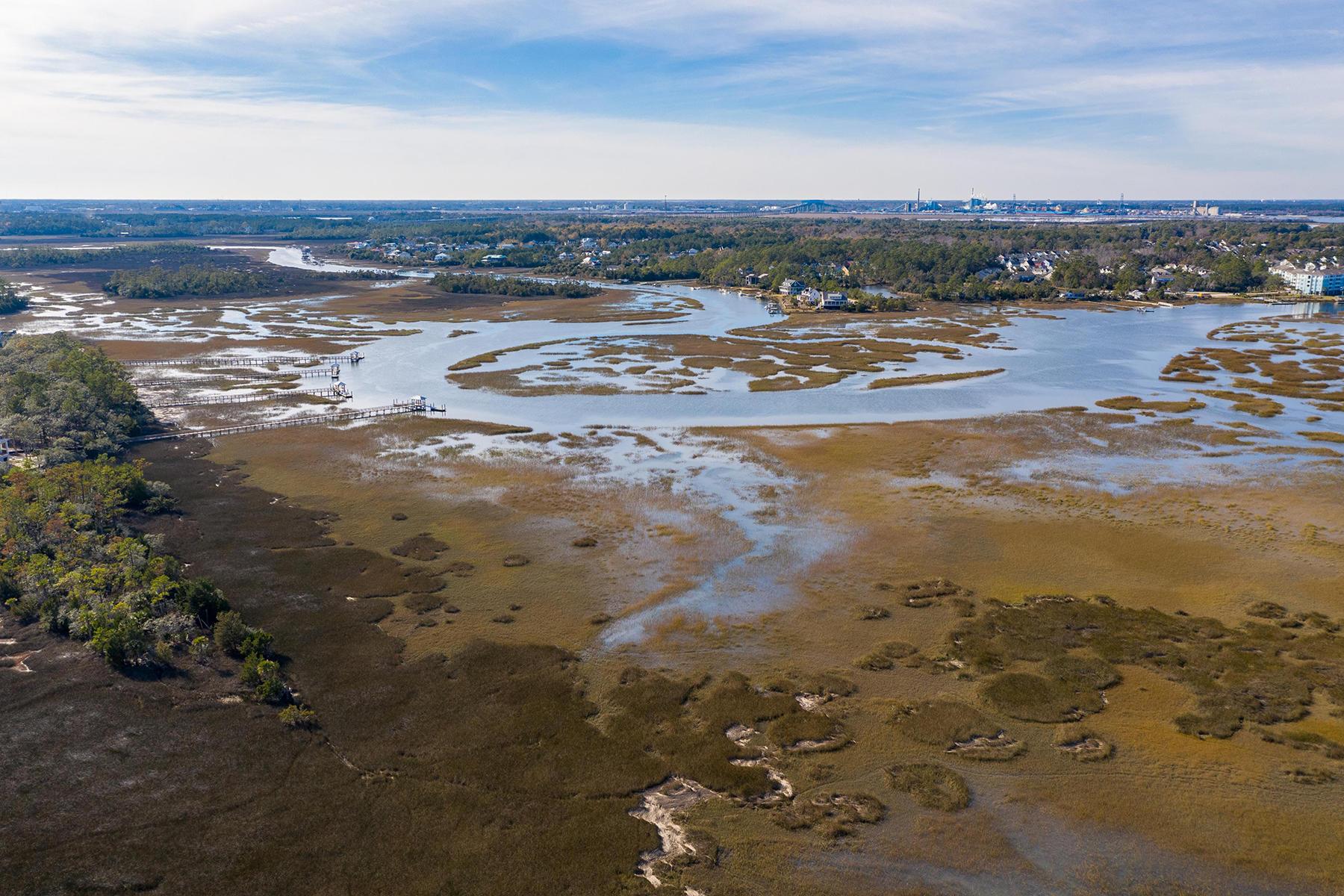 Daniel Island Park Homes For Sale - 555 Lesesne, Charleston, SC - 0