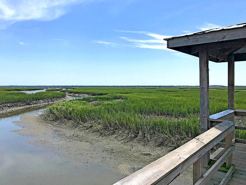 Oyster Point Homes For Sale - 1455 Red Tide, Mount Pleasant, SC - 25