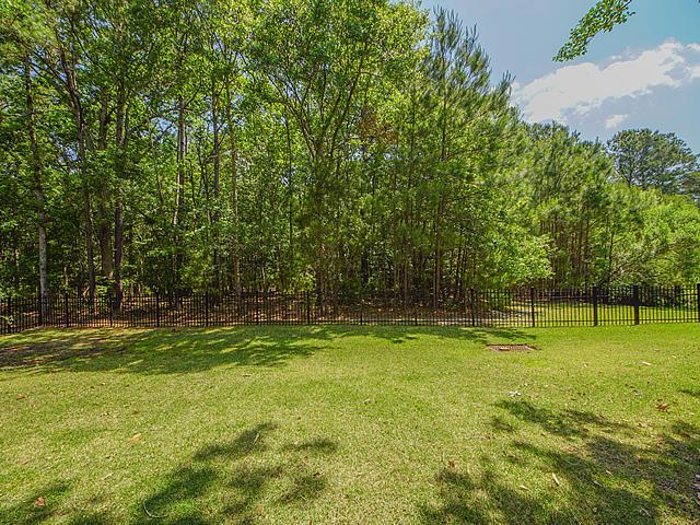 Carolina Park Homes For Sale - 1482 Gunnison, Mount Pleasant, SC - 61