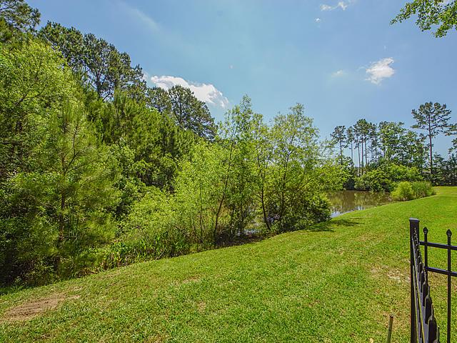 Carolina Park Homes For Sale - 1482 Gunnison, Mount Pleasant, SC - 63