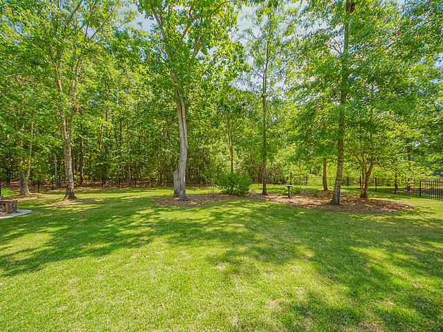 Carolina Park Homes For Sale - 1482 Gunnison, Mount Pleasant, SC - 66