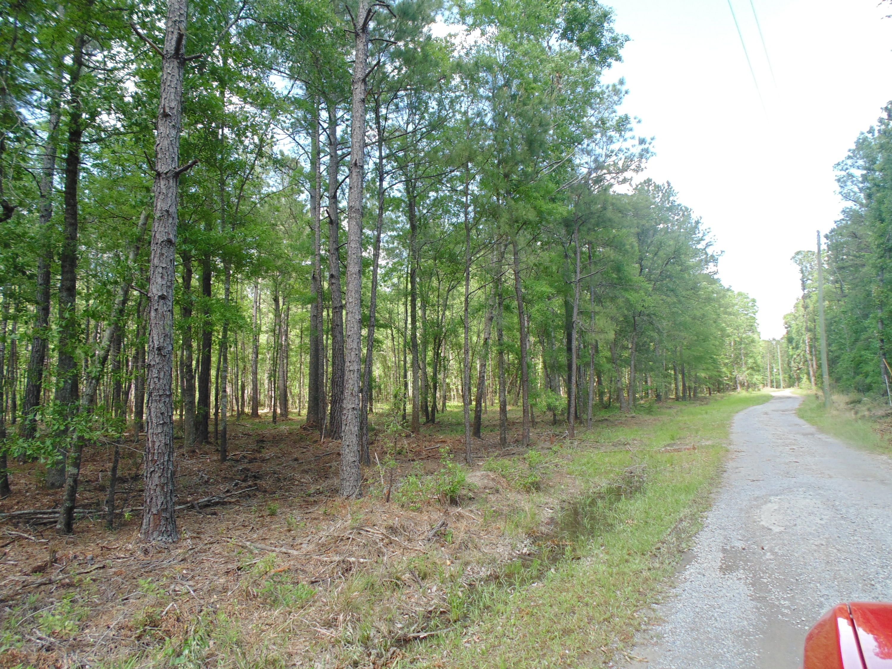 Tract 2 Dianes Trail Huger, SC 29450