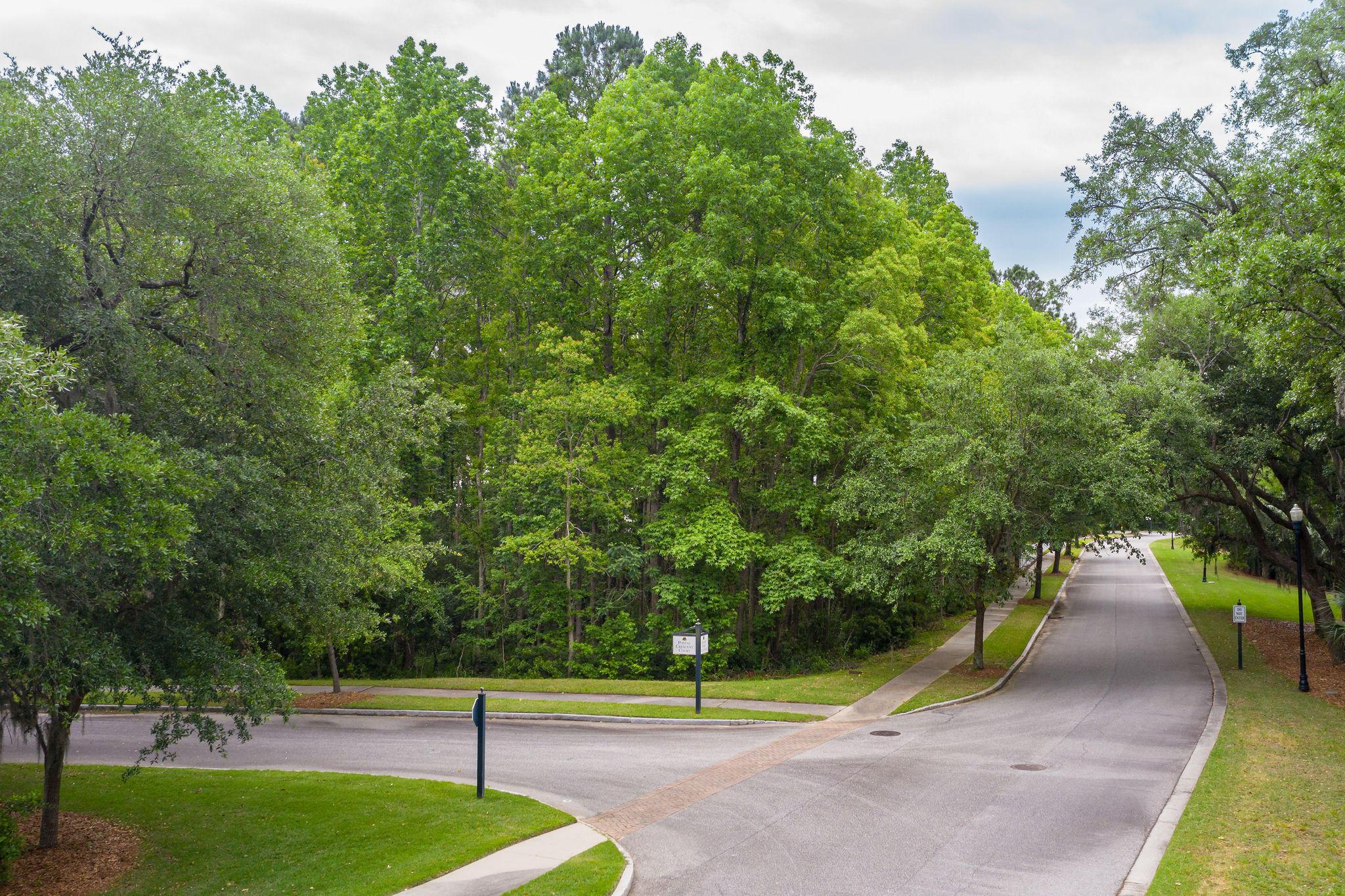 Beresford Hall Homes For Sale - 230 Grand Park, Charleston, SC - 3