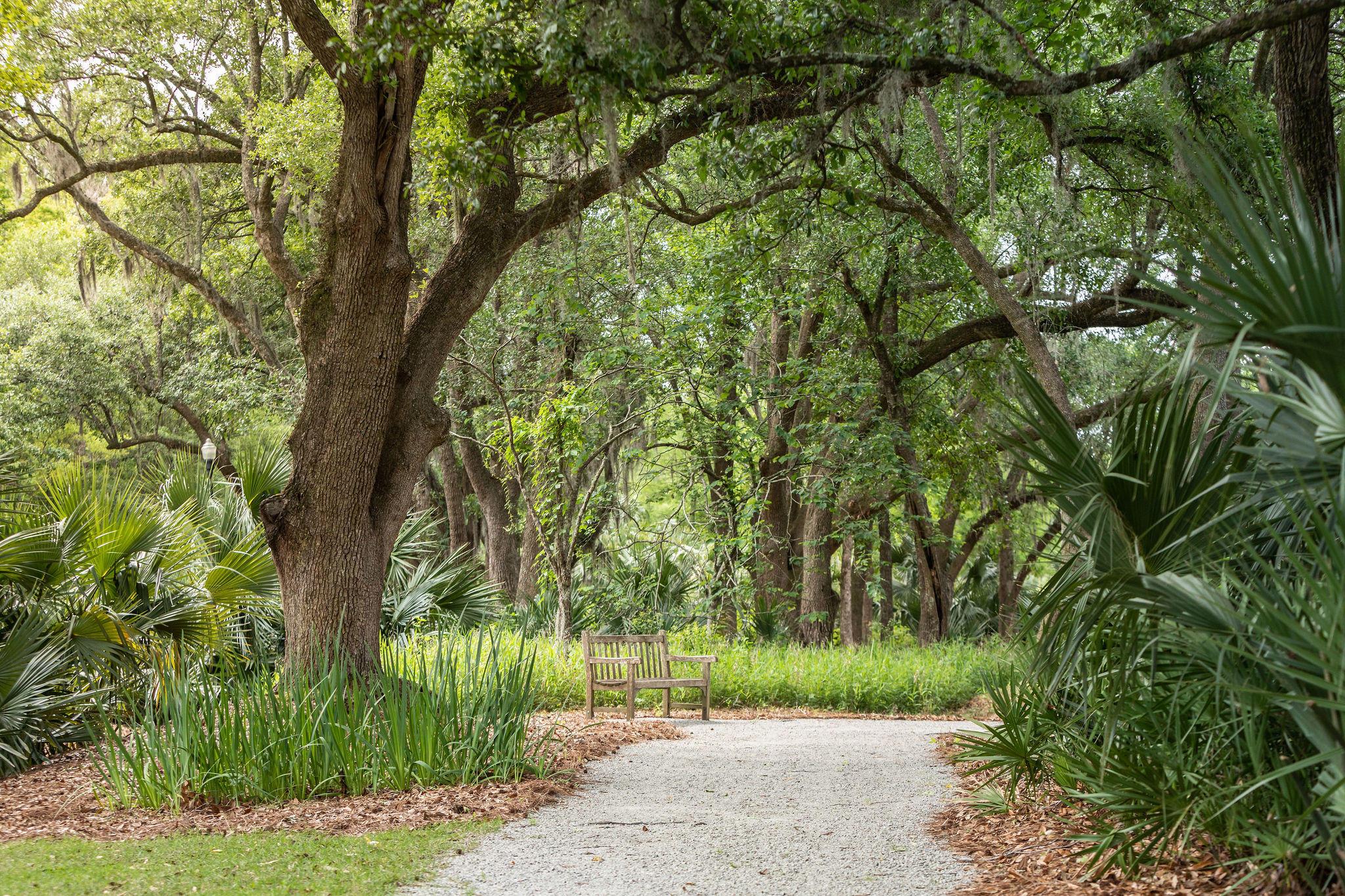 Beresford Hall Homes For Sale - 230 Grand Park, Charleston, SC - 9