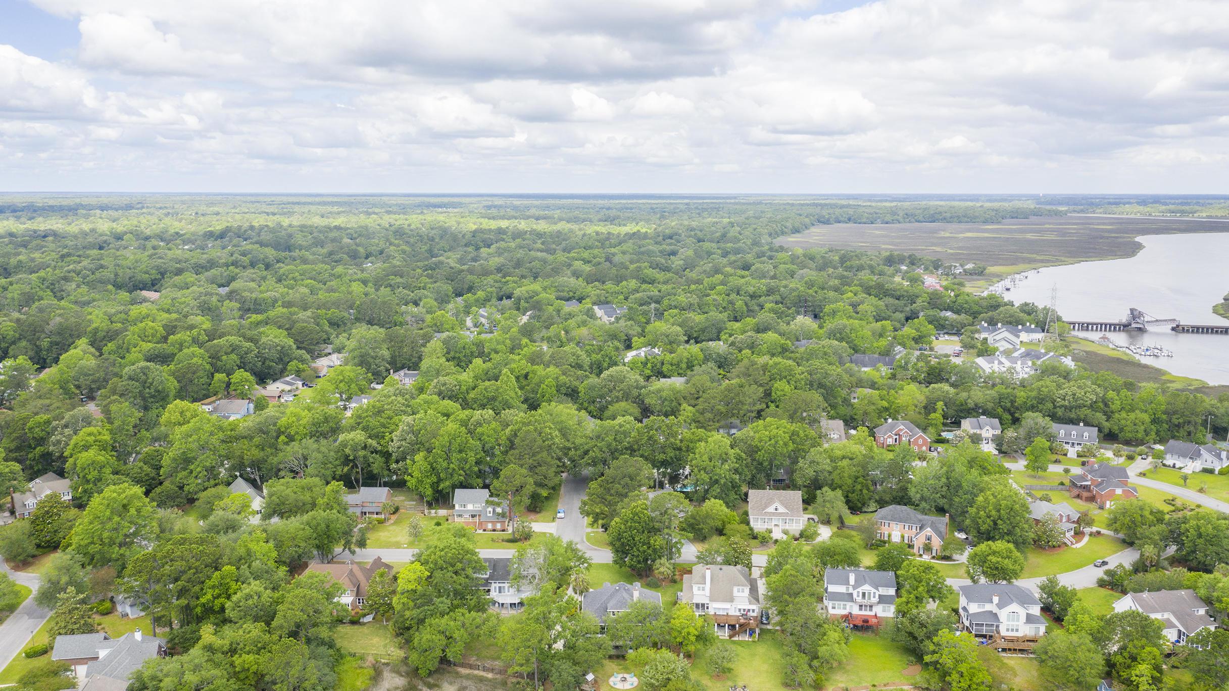 Ashland Plantation Homes For Sale - 2369 Rice Pond, Charleston, SC - 86