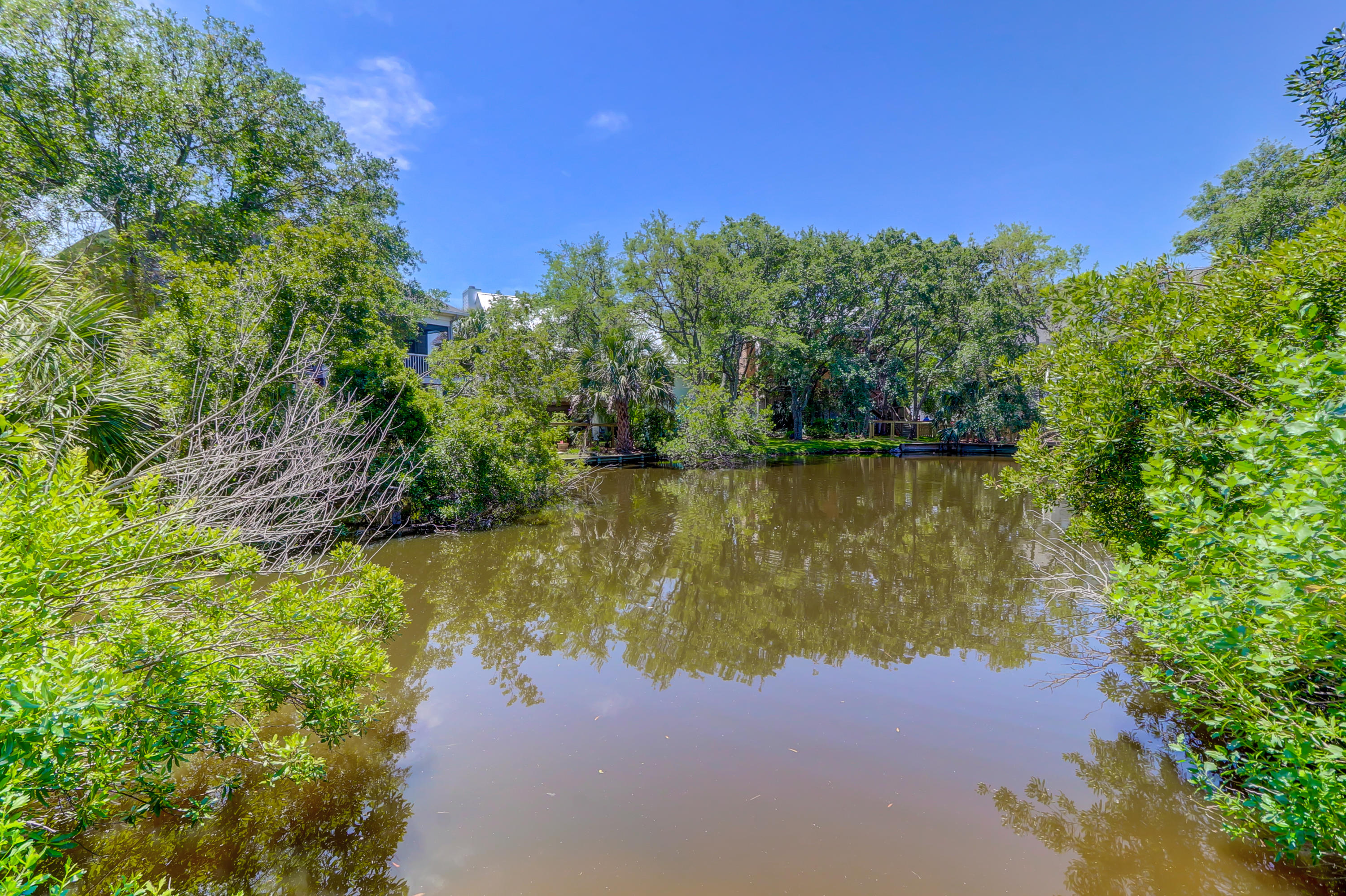 Fiddlers Marsh Homes For Sale - 1499 Fiddlers Lake, Mount Pleasant, SC - 39