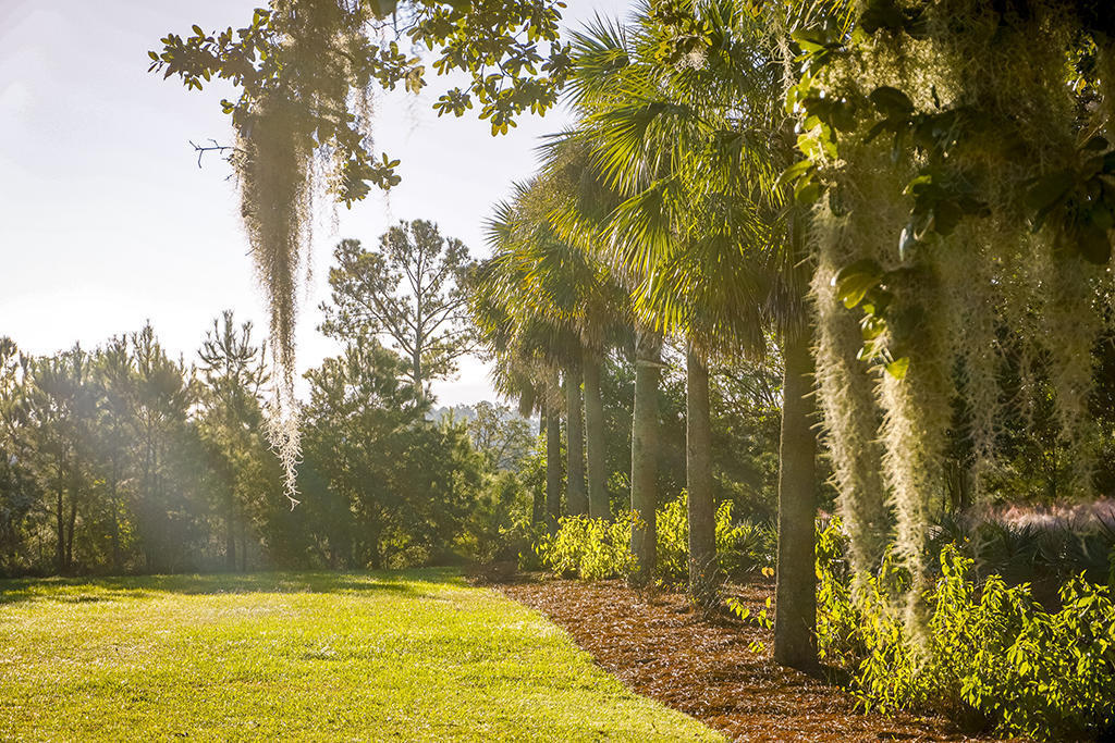151 River Green Place Charleston, SC 29492