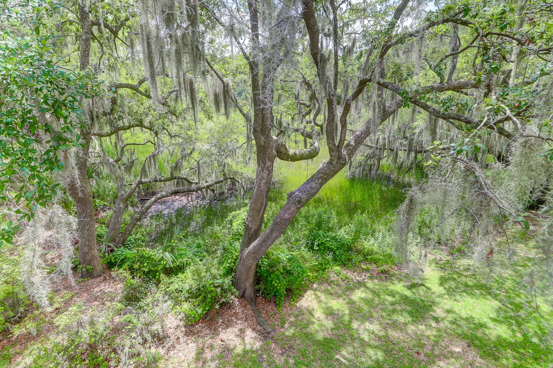 Parrot Creek Homes For Sale - 879 Parrot Creek, Charleston, SC - 18