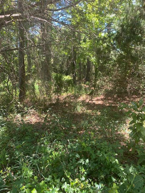 Marshall Reservation Lots For Sale - 2923 Middle, Sullivans Island, SC - 3