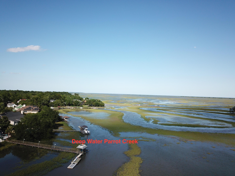 Parrot Creek Homes For Sale - 879 Parrot Creek, Charleston, SC - 10