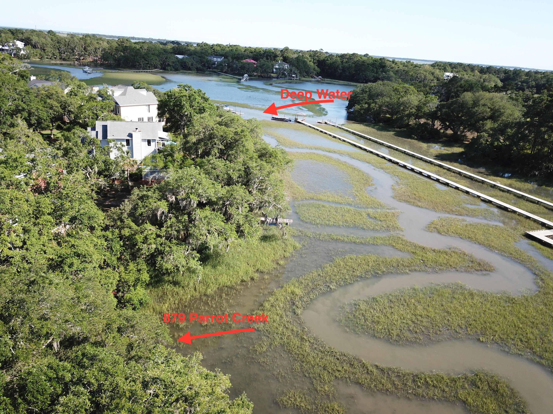 Parrot Creek Homes For Sale - 879 Parrot Creek, Charleston, SC - 1