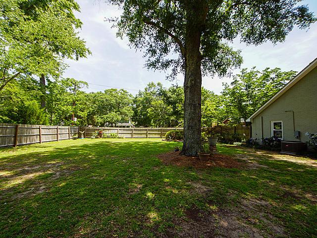Avian Park Homes For Sale - 1217 Myrick, Mount Pleasant, SC - 11