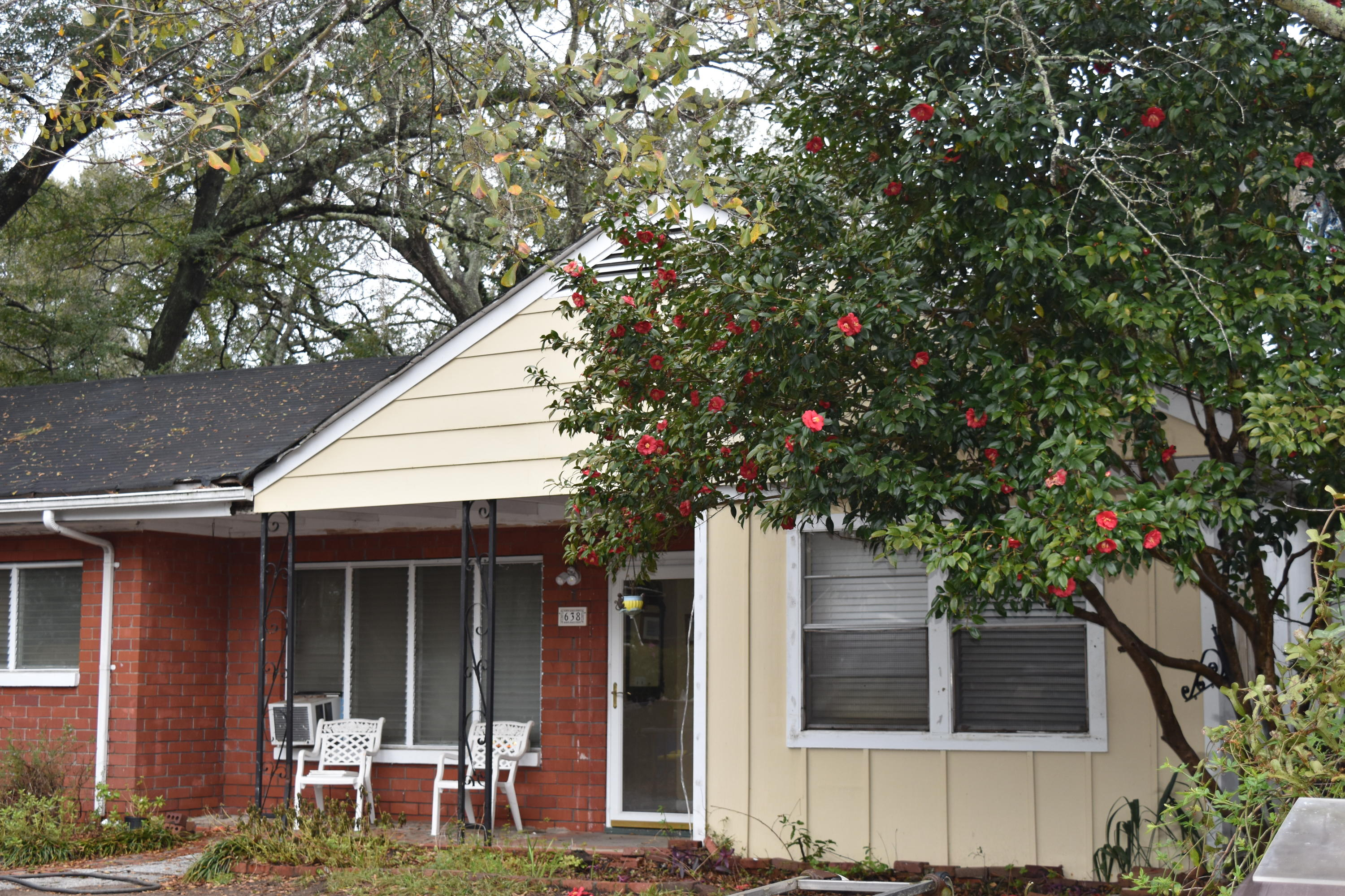 638 Palmetto Street Mount Pleasant, SC 29464