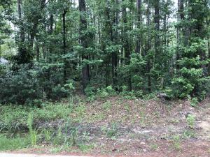 Lot 53  Pecan Drive  Summerville, SC 29483