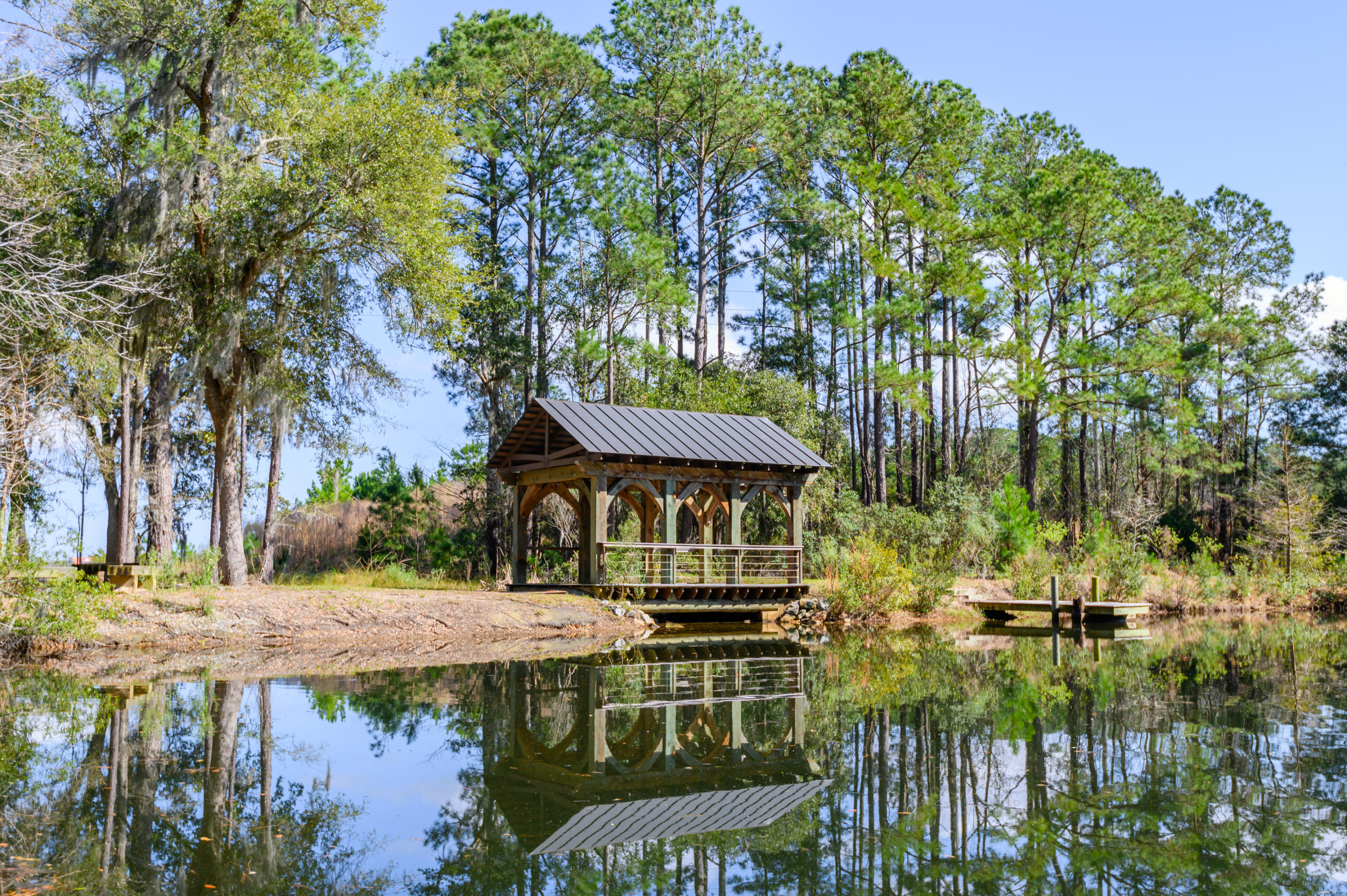 The Preserve at Fenwick Plantation Homes For Sale - 1638 John Fenwick, Johns Island, SC - 6