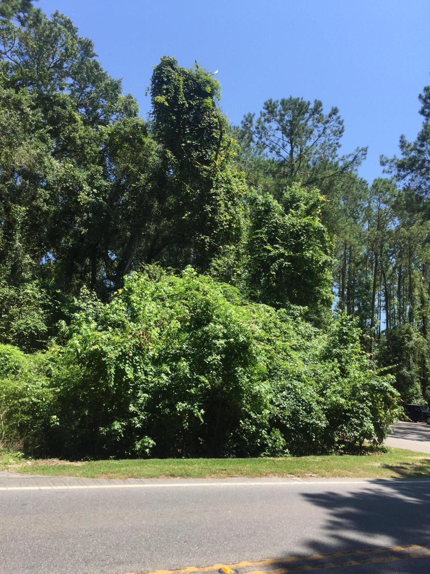 3563 Bohicket Road Johns Island, SC 29455
