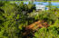 Lot 78 Cape Island Drive, Mount Pleasant, SC 29429