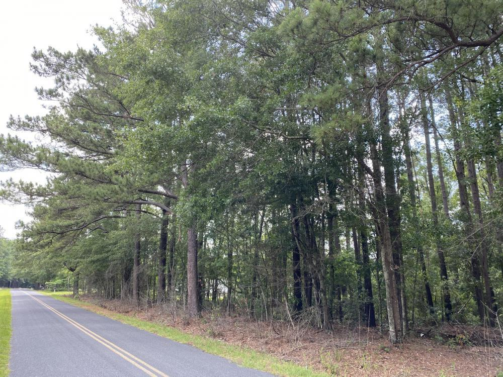 Taylor Pond Road Dorchester, SC 29437