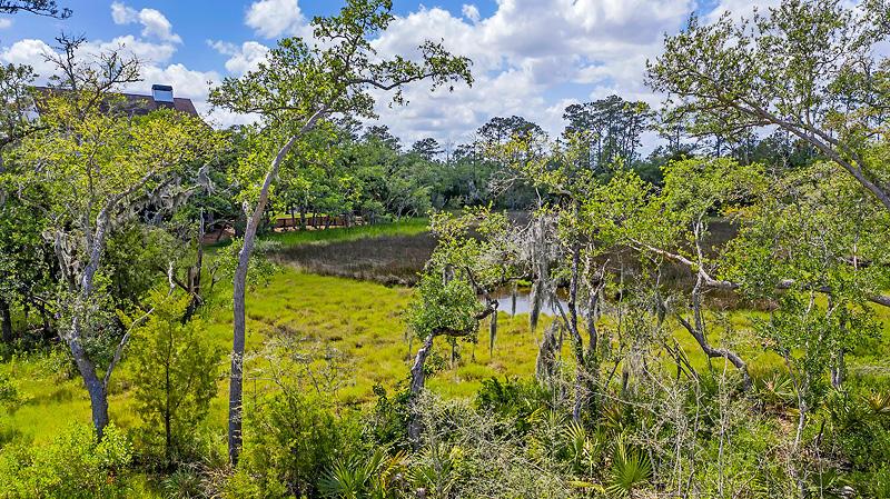 Daniel Island Homes For Sale - 7796 Farr, Charleston, SC - 4