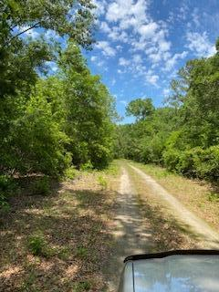 5195 County Line Road UNIT Klh Platt Lot 8 Ravenel, SC 29470