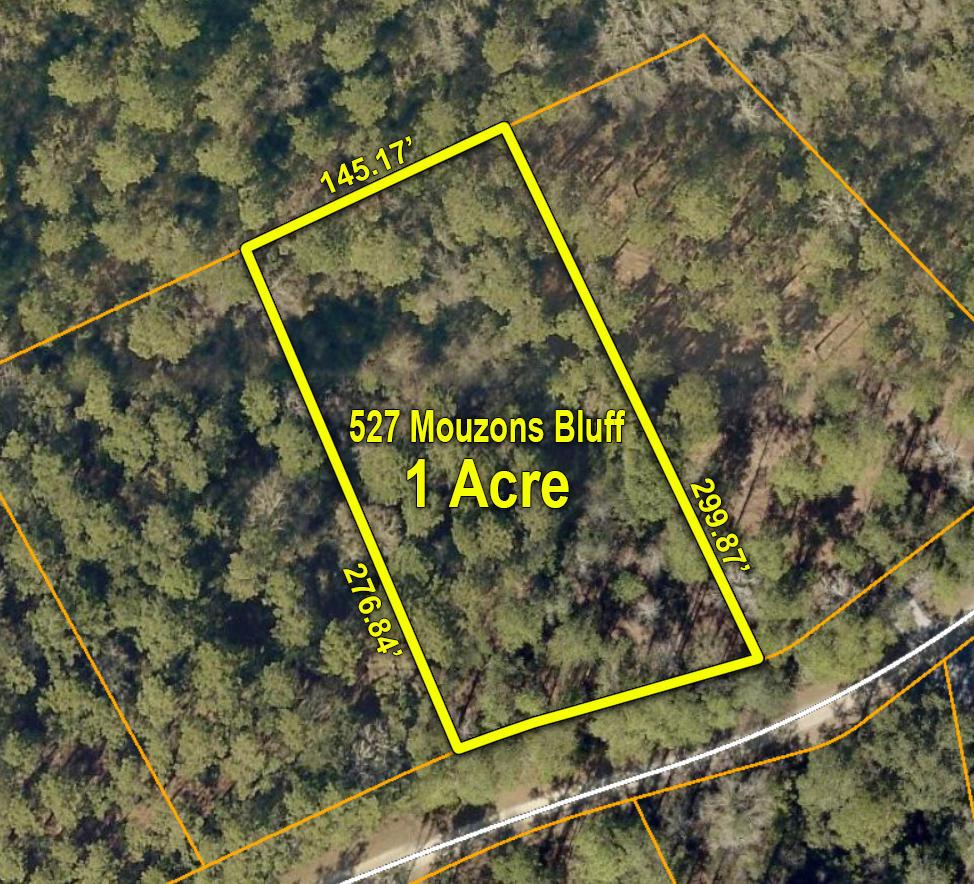 527 Mouzons Bluff Mcclellanville, SC 29458