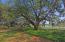700 Daniel Ellis Drive, 8303, Charleston, SC 29412