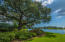 2405 Daniel Island Drive, Daniel Island, SC 29492