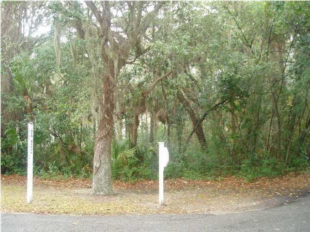 1 Gun Bluff Road Edisto Island, SC 29438