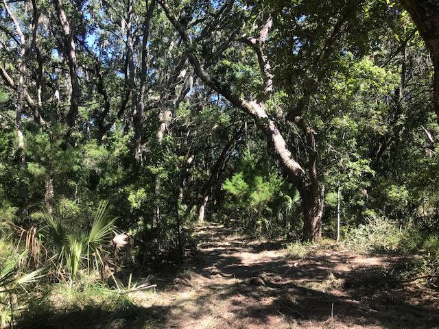 17 Saint Pierre Creek Drive Edisto Island, SC 29438