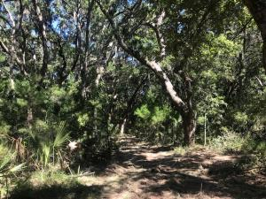 8456 St Pierre Creek Drive, Edisto Island, SC 29438