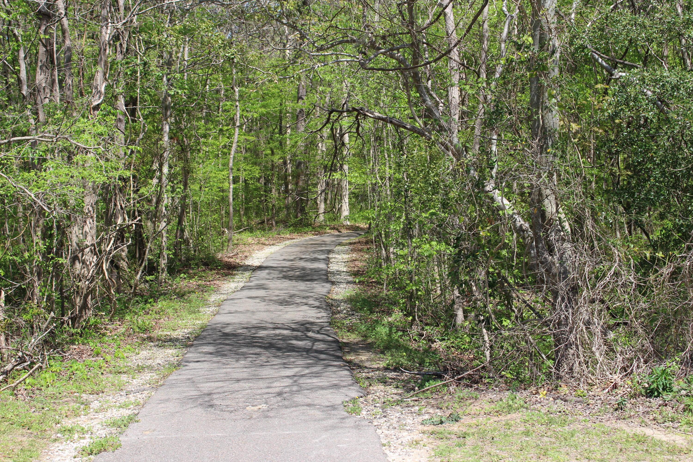105 N Norfolk Way Goose Creek, SC 29445