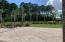 Serene picnic area