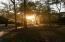 Sunrise through the trees in Carolina Park