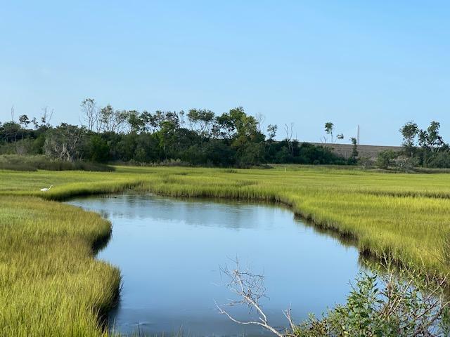 1251 Water View Lane Charleston, SC 29492