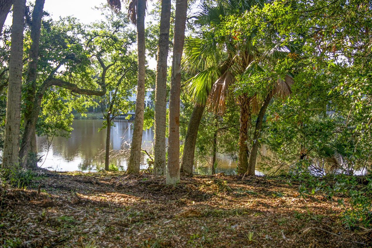 714 Jungle Road Edisto Island, SC 29438