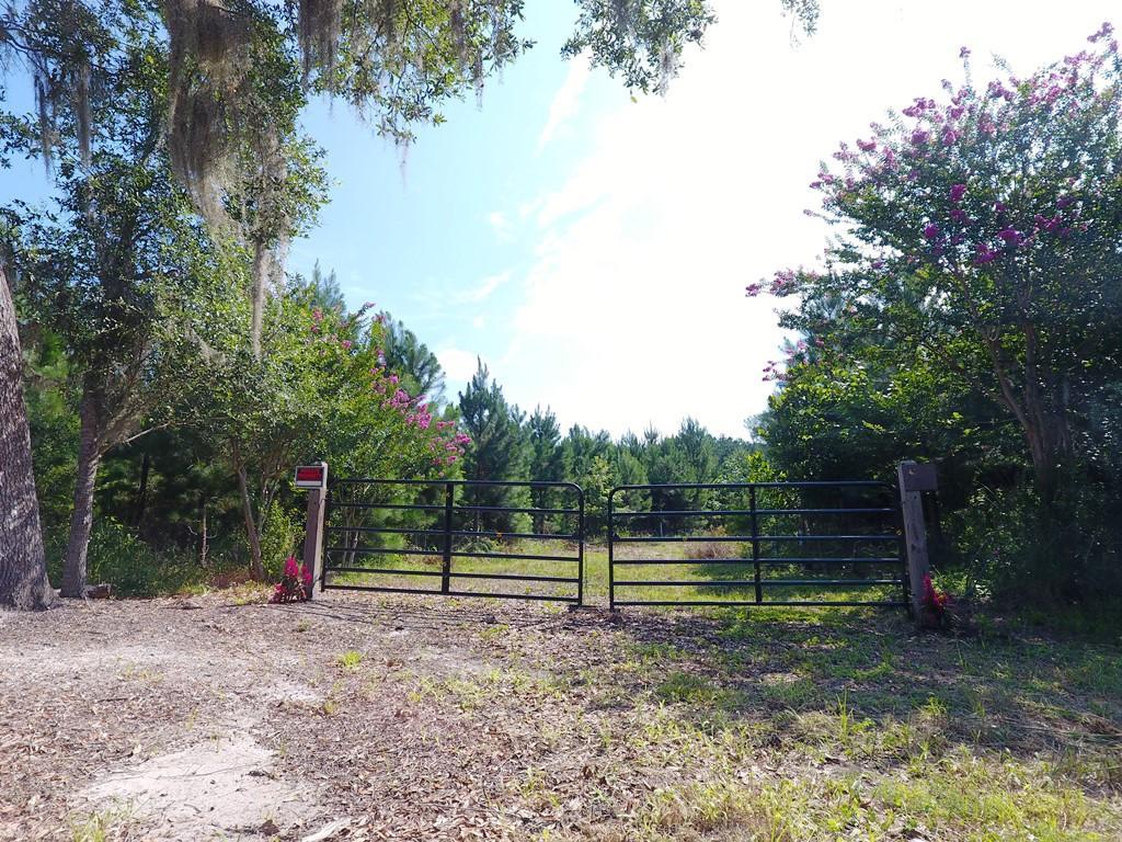 Green Pond Highway Green Pond, SC 29446