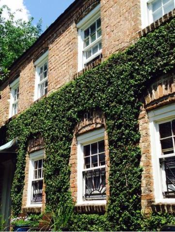 20 Montagu Street UNIT A Charleston, SC 29401