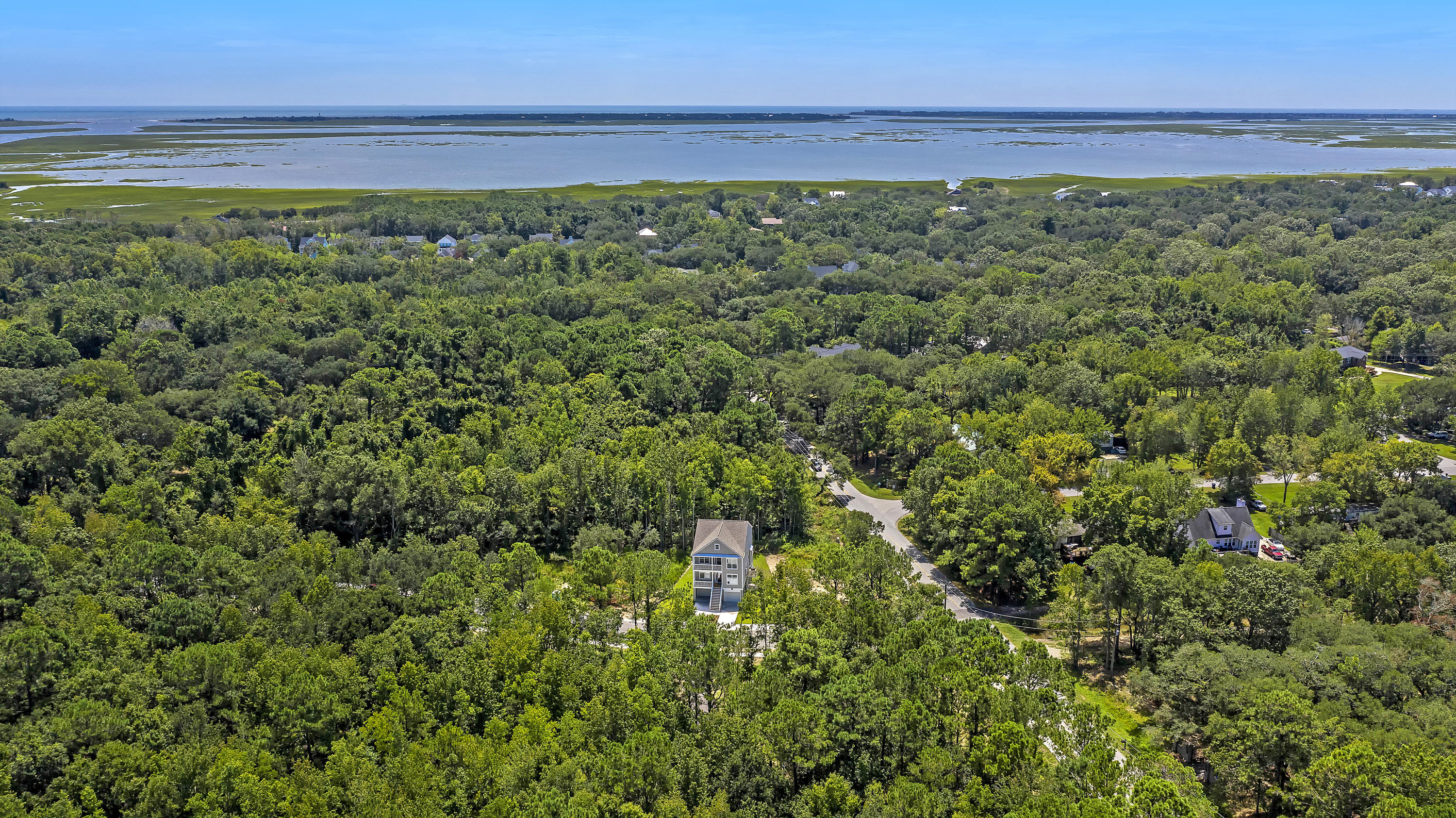 Wando Forest Homes For Sale - 3705 Sandy Gate Ln, Mount Pleasant, SC - 64