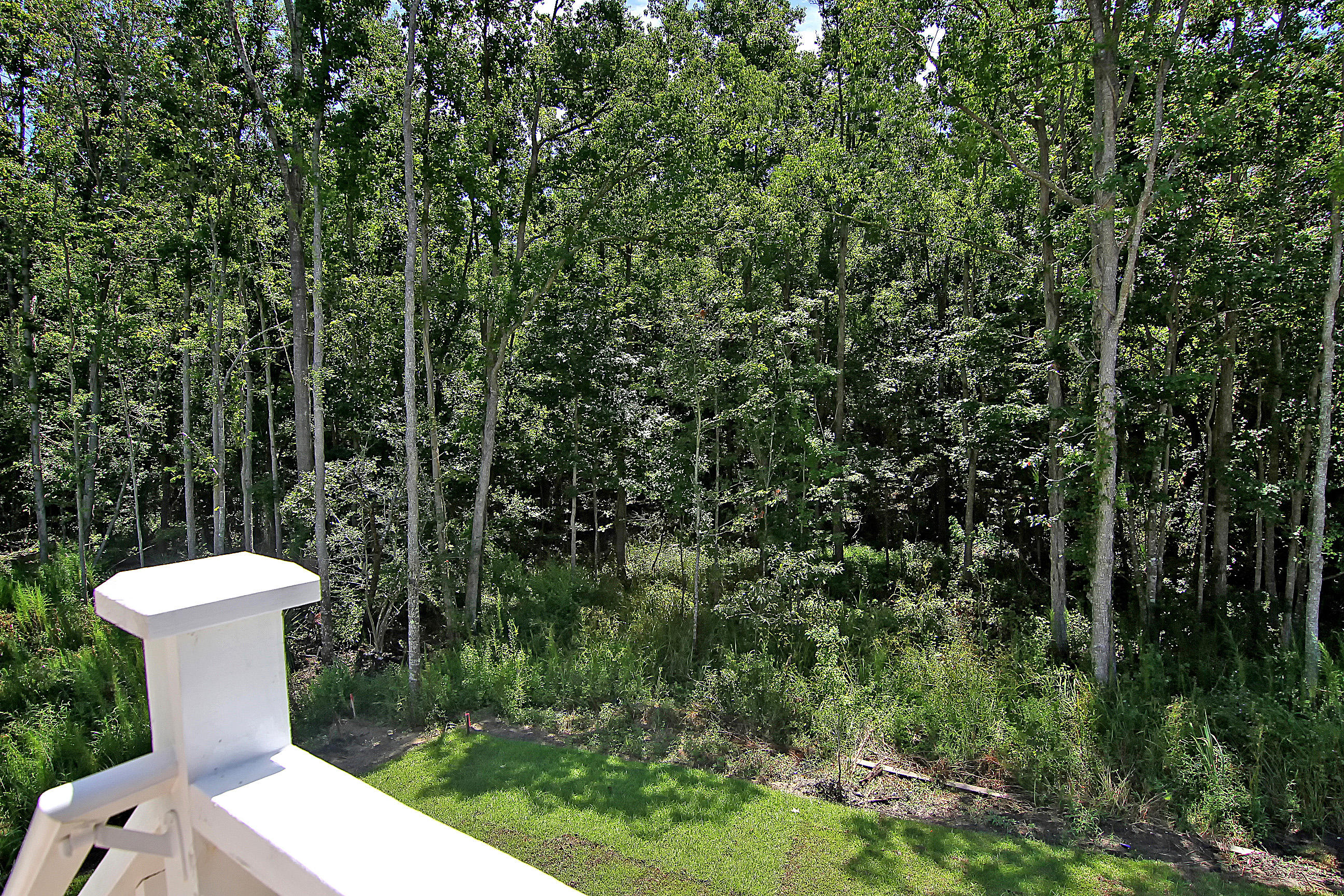 Wando Forest Homes For Sale - 3705 Sandy Gate Ln, Mount Pleasant, SC - 35