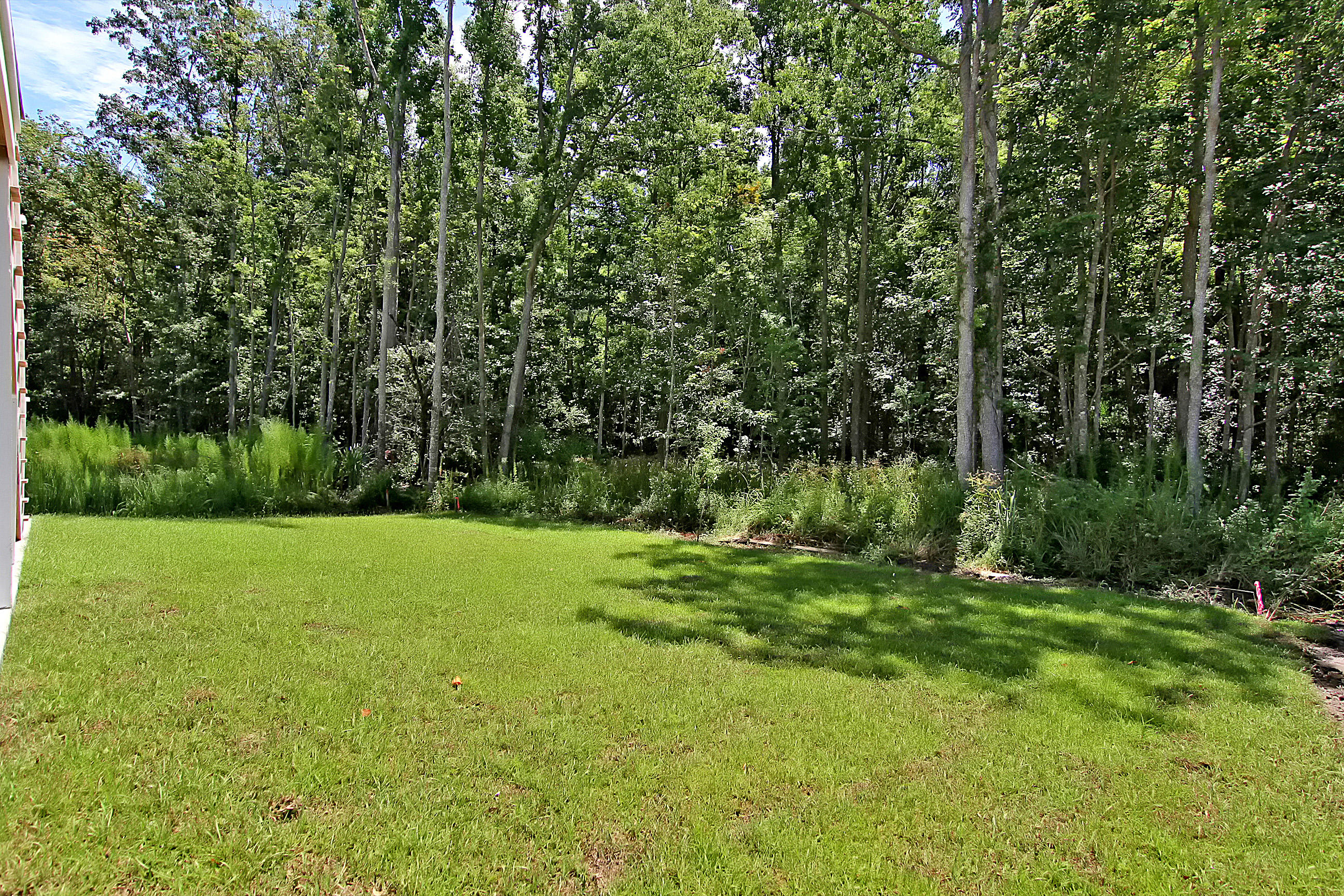 Wando Forest Homes For Sale - 3705 Sandy Gate Ln, Mount Pleasant, SC - 8