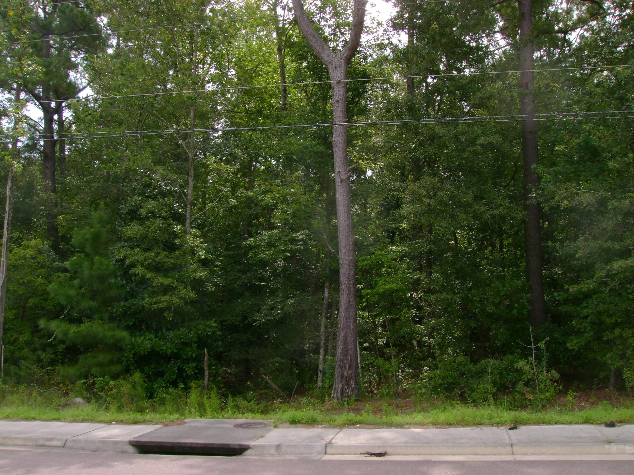 S Live Oak Drive Moncks Corner, SC 29461
