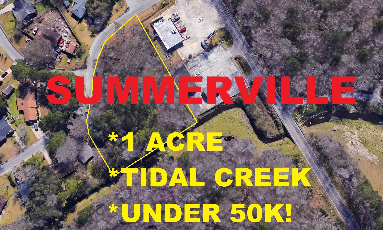 Judith Drive Summerville, SC 29485