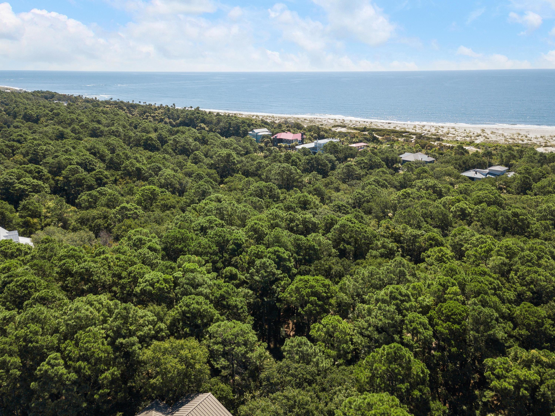 Dewees Island Lots For Sale - 251 Pelican Flight, Dewees Island, SC - 5